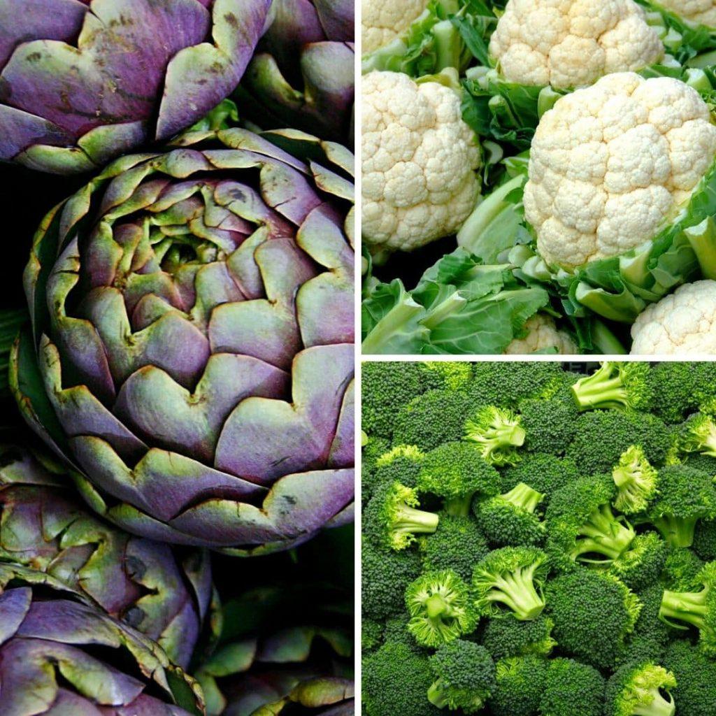 Gemüse für Hunde - Teil 1