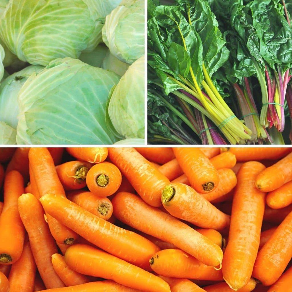 Gemüse für Hunde - Teil 4