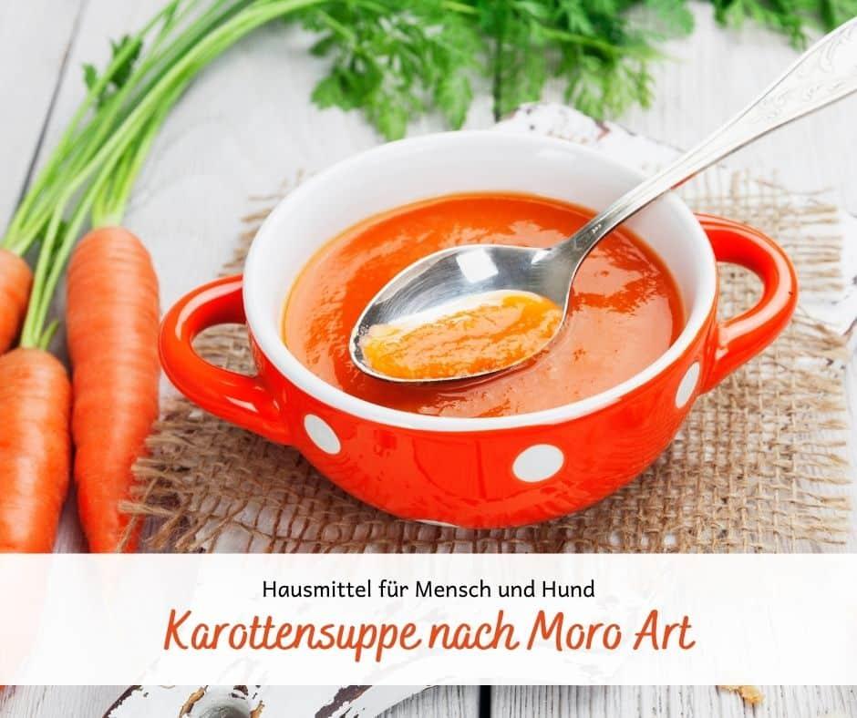 Karottensuppe nach Moro Art